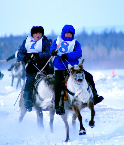 "Tour to mountainous Tuva ""Visit to reindeer herders of Todzha"""
